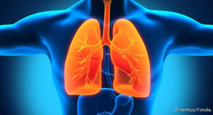 , Tuberculosis: Infection, symptoms, therapy